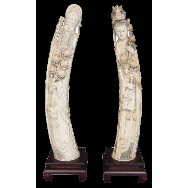 Ivory Fangs